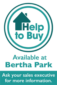 Help to Buy Side Ads BERTHA 20